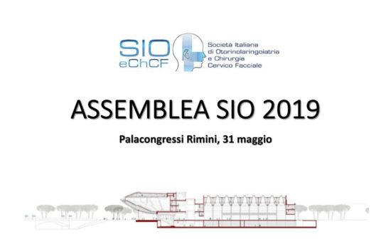 Assemblea-SIO-2019-1